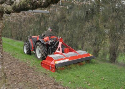 Strong enough to mow prunings in orchards & vineyards